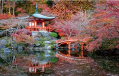 学日语口语难不难?主要看你是不是找对了学习的方法。