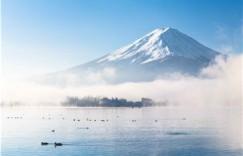 小学日语在线学习有什么优势?为什么这么火?