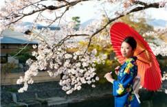 在线一对一日语一节课多少钱 有哪些比较好的课