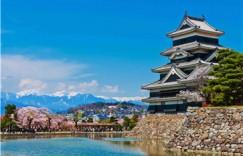 小学线上学日语哪家好?我这样选择